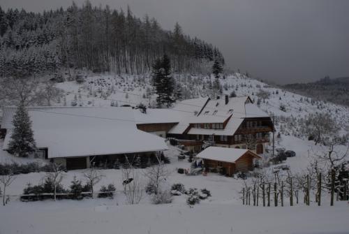 Springbauernhof im Schnee
