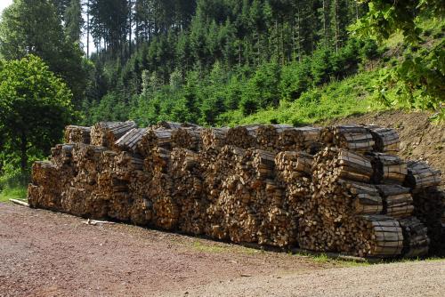 Brennholz, wieviel brauchen Sie denn?